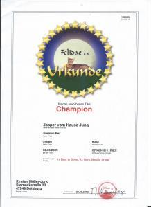 jasper champion